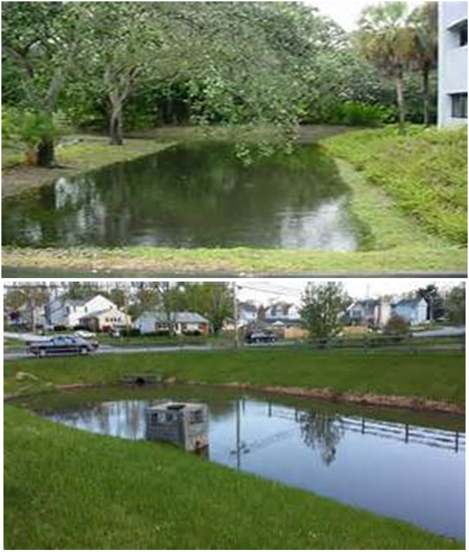 Wet Pond